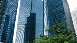 How to set up a private limited company in Singapore?